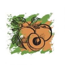 Растительное масло Абрикосовых косточек 50 мл