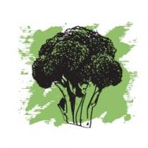 Растительное масло Брокколи экологически чистое нераф. 15 мл