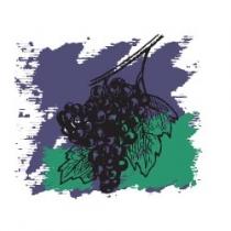 Растительное масло Виноградных косточек 50 мл