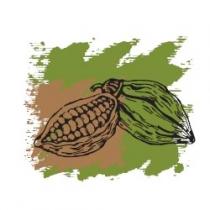 Растительное масло Какао нерафинированное 120 мл