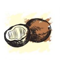 Растительное масло Кокосовое экологически чистое нераф. 120 мл