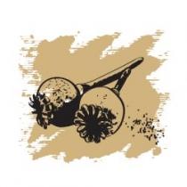 Растительное масло Маковых семян 50 мл