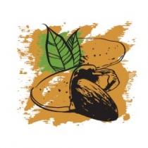 Растительное масло Миндаля сладкого 50 мл