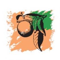 Растительное масло Персиковых семян 50 мл