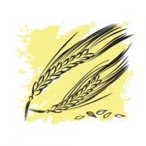 Растительное масло Пшеничных зародышей нерафинированное 50 мл