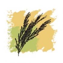Растительное масло Рисовых отрубей 50 мл