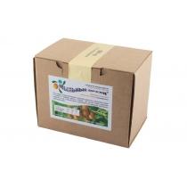 Мыльные орехи(сорт S. Trifoliatus), 200 гр