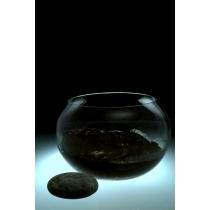 Грязь бальнеологическая «Анапская» сульфидно-иловая пастообразная, 1400 гр